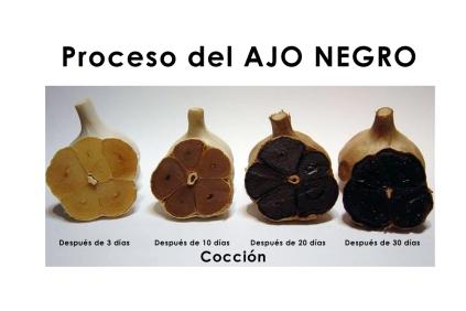 ajo_negro2