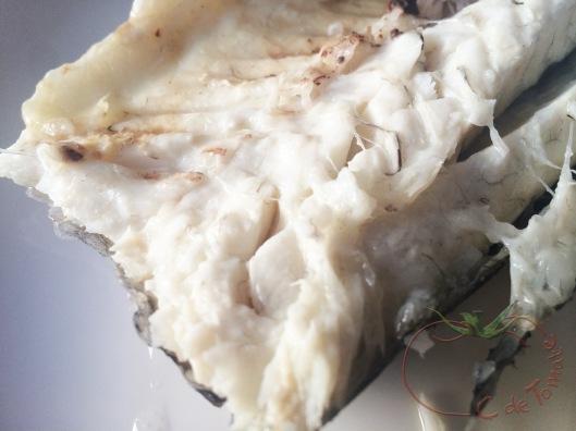 peix-sal-1